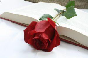 Dzień Książki i Praw Autorskich