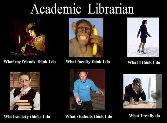 bibliotekarz