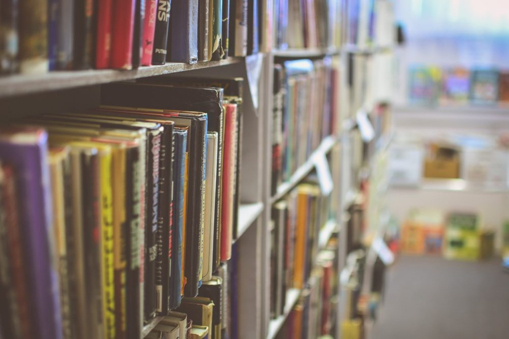 Program Literatura