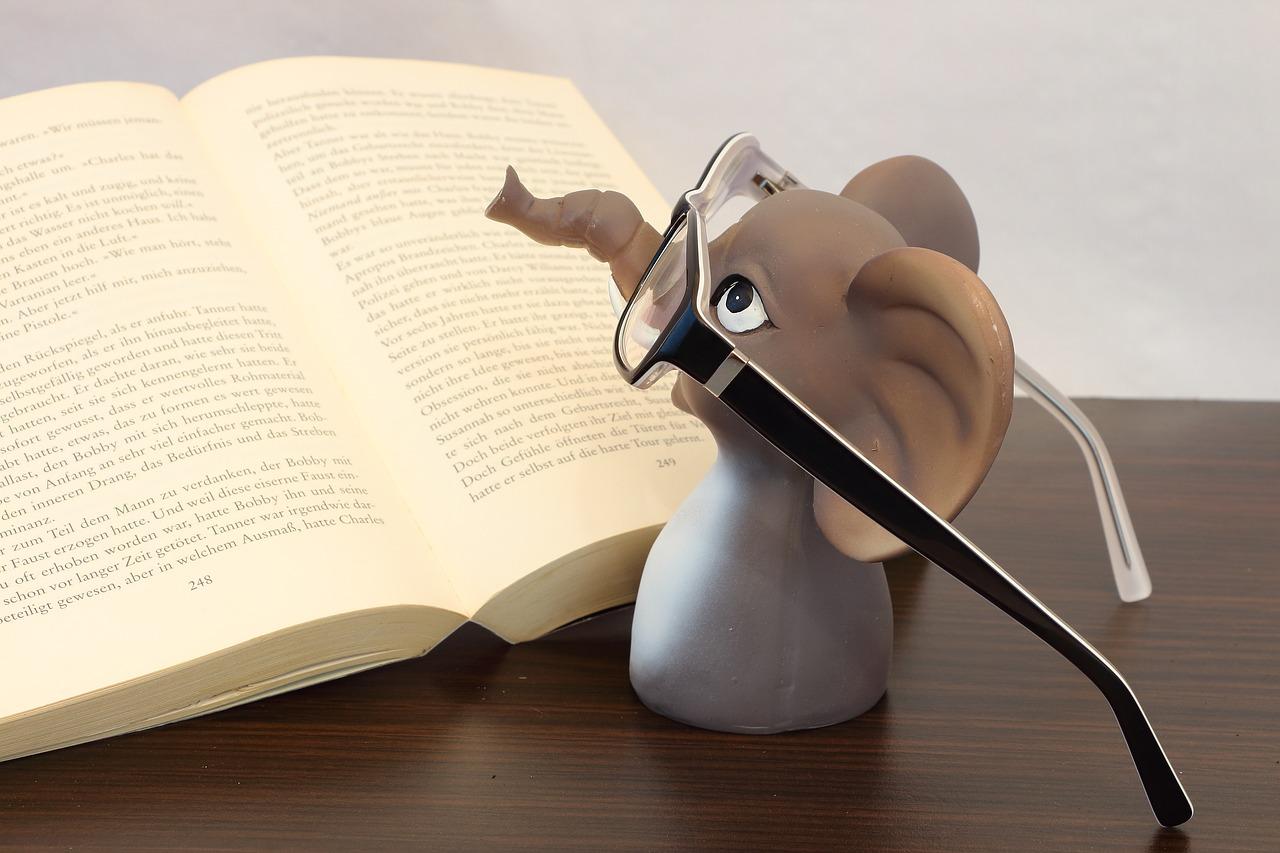 3 zabawne książki, których bohaterami są zwierzęta