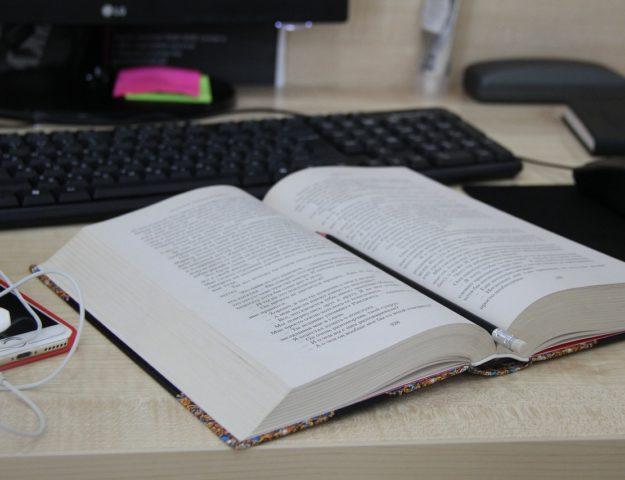 Gra komputerowa jako nowa forma literatury