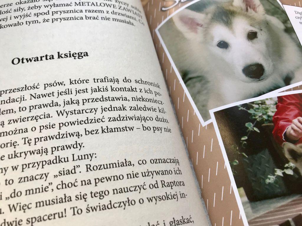 Pieskie życie – książka z przesłaniem