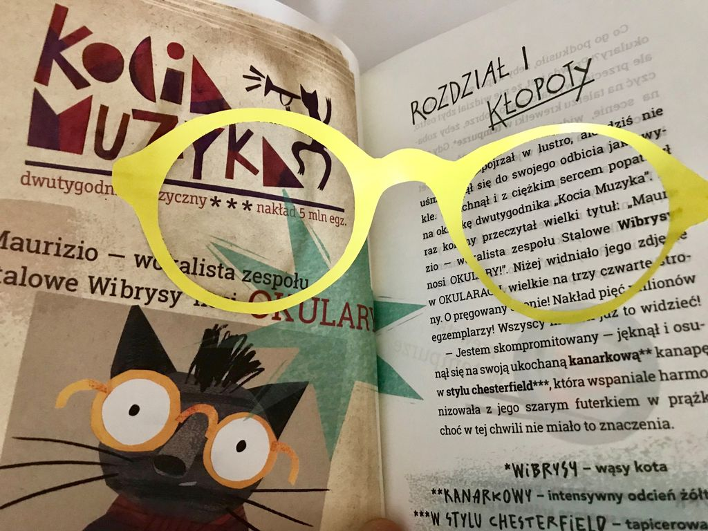 Koci celebryta i nauka czytania