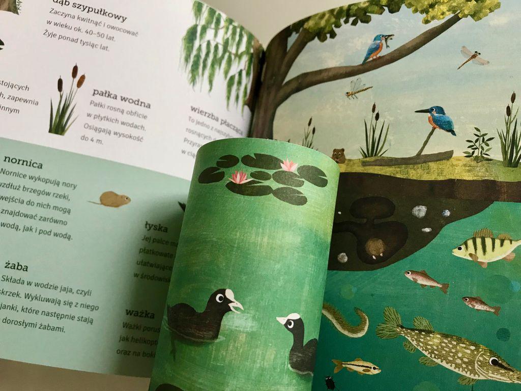 Częściowo zakryte – książka z zakładkami