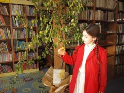 W cieniu Mirabelki – warsztaty w Bibliotece Publicznej Gminy Godziesze Wielkie