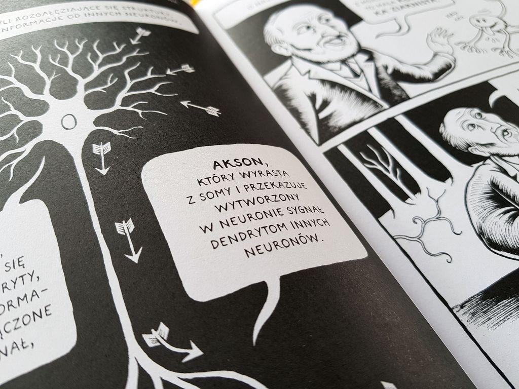 Komiksowy proces czytania