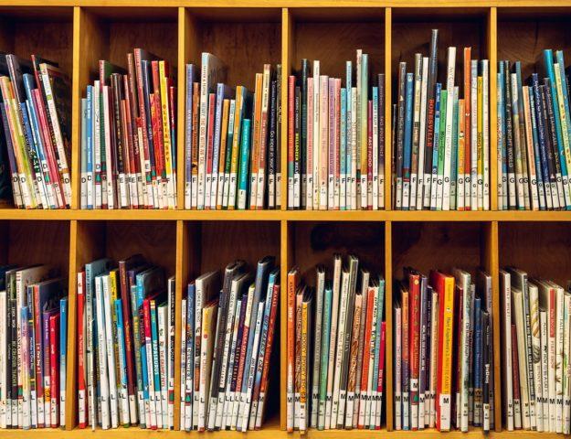 Zakup nowości wydawniczych i lektur do bibliotek szkolnych oraz bibliotek pedagogicznych
