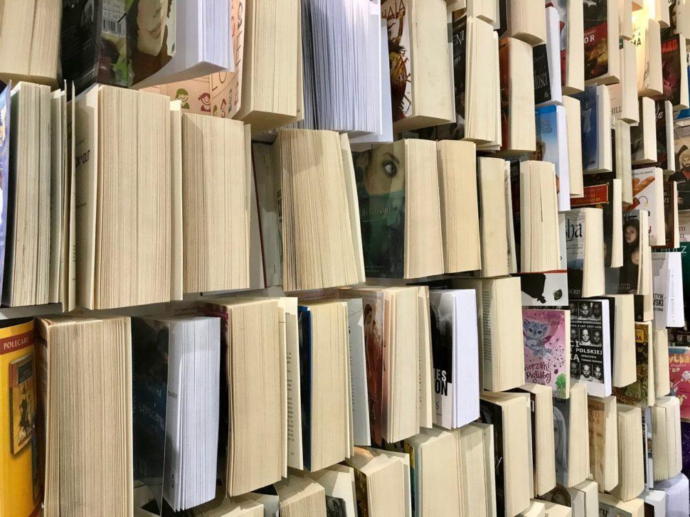 wariacje literackie