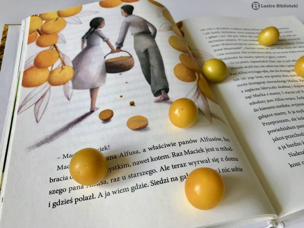 Mirabelka – kiełkująca historia w 100licy