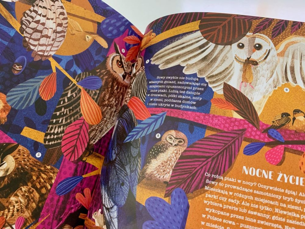 Ptasie opowieści – 2 tytuły dla pasjonatów ornitologii