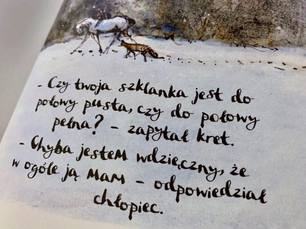 Chłopiec, kret, lis i koń – wyjątkowa książka